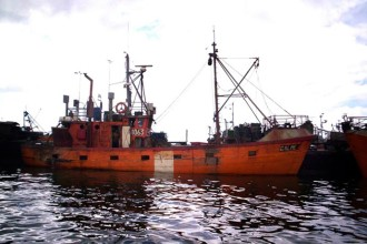 Revista Puerto - En el CFP cuatro nuevos costeros y devolución de merluza