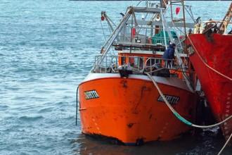 Revista Puerto - El CFP modificó el área de veda permanente de merluza