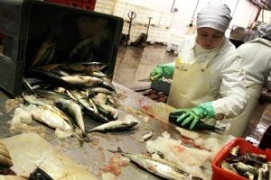 Revista Puerto - China modifica normas de inocuidad alimentaria