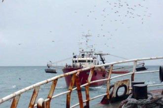 Revista Puerto - Los números de la pesca en agosto y septiembre