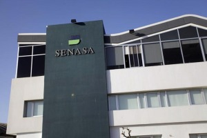 Revista Puerto - Medida de fuerza de SENASA complica a la industria pesquera