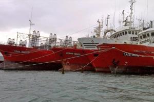 La flota de Vieira volverá a la actividad.