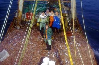 Revista Puerto - Informe económico pesquero de diciembre