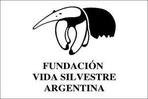 Revista Puerto - Presentan estudio sobre la cadena de suministros del pescado blanco