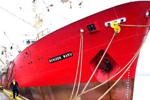 El Echizen Marú sigue operando normalmente y pide más cuota, cuando en realidad deberían retirarle el permiso de pesca.